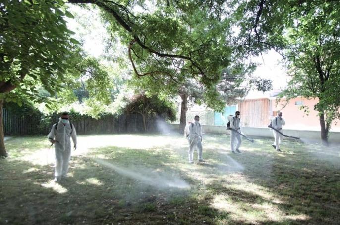 Komuna e Prizrenit merr kritika për vonesat në dezinsektim të ambientit